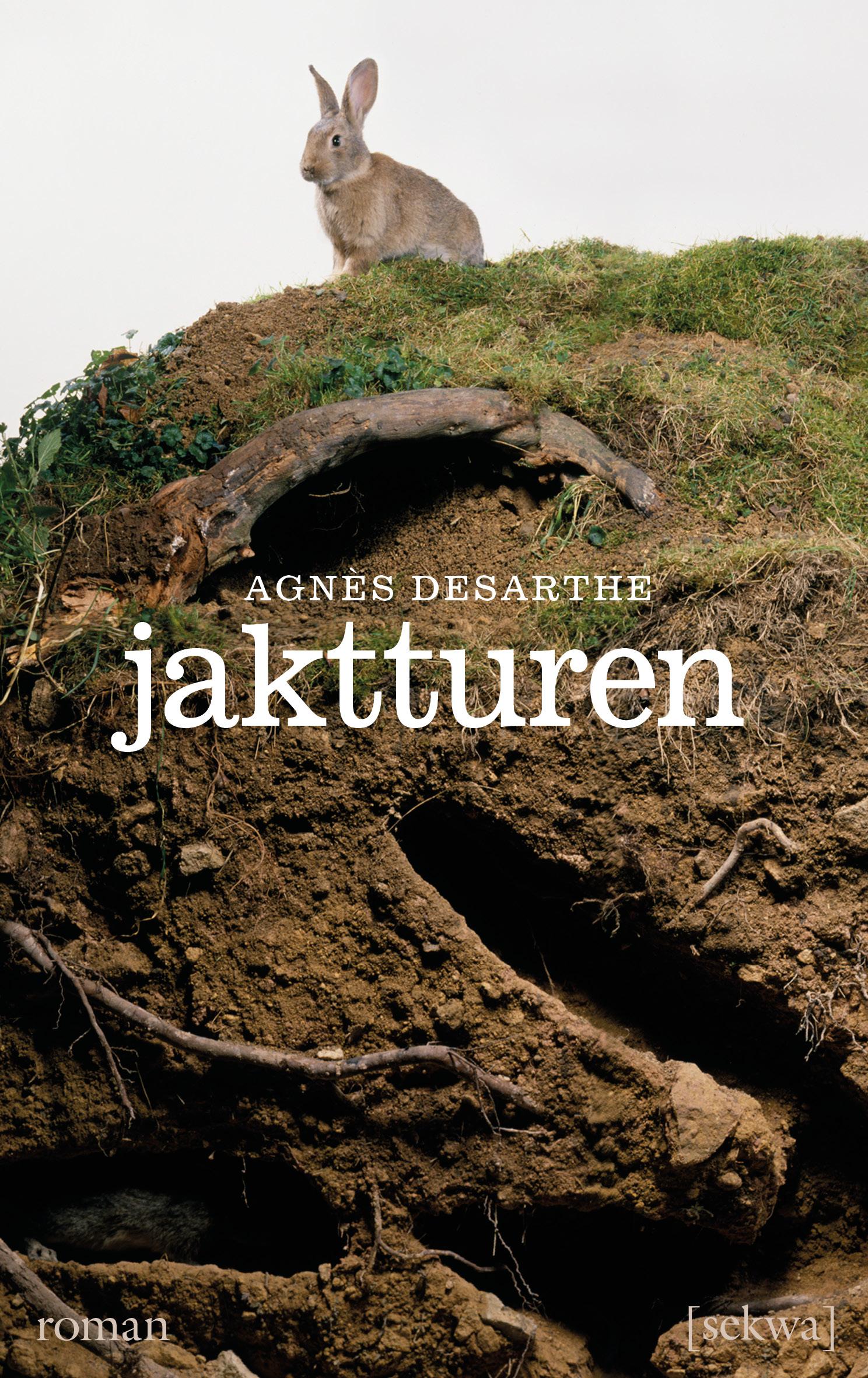 Agnès Desarthe: Jaktturen